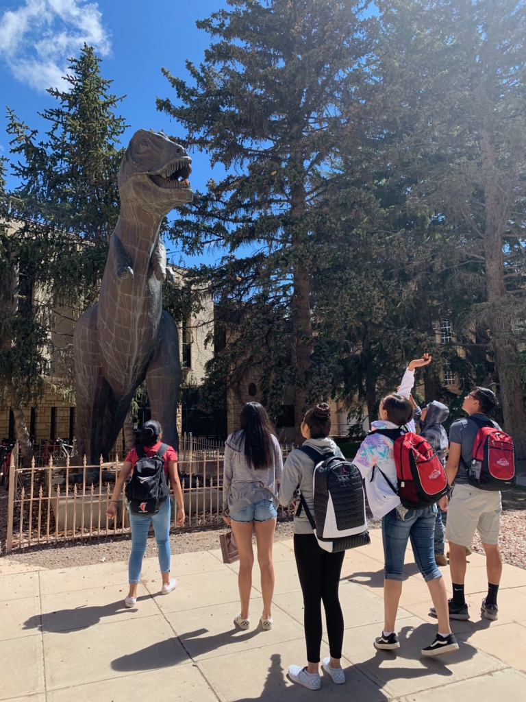 students try and put pinecones in rexy