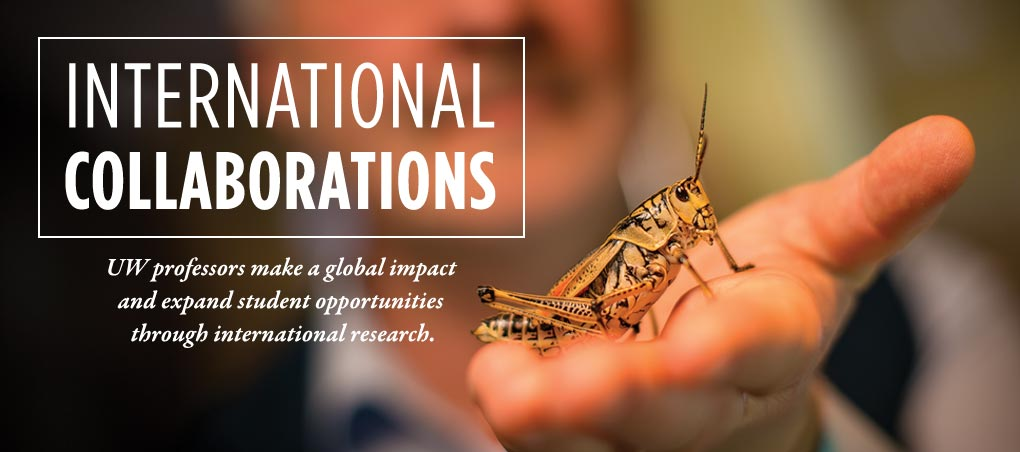 International Collaborations, picture of a grasshopper in someone's hand