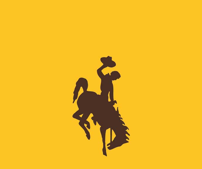 brown outline of a cowboy hat on a gold background