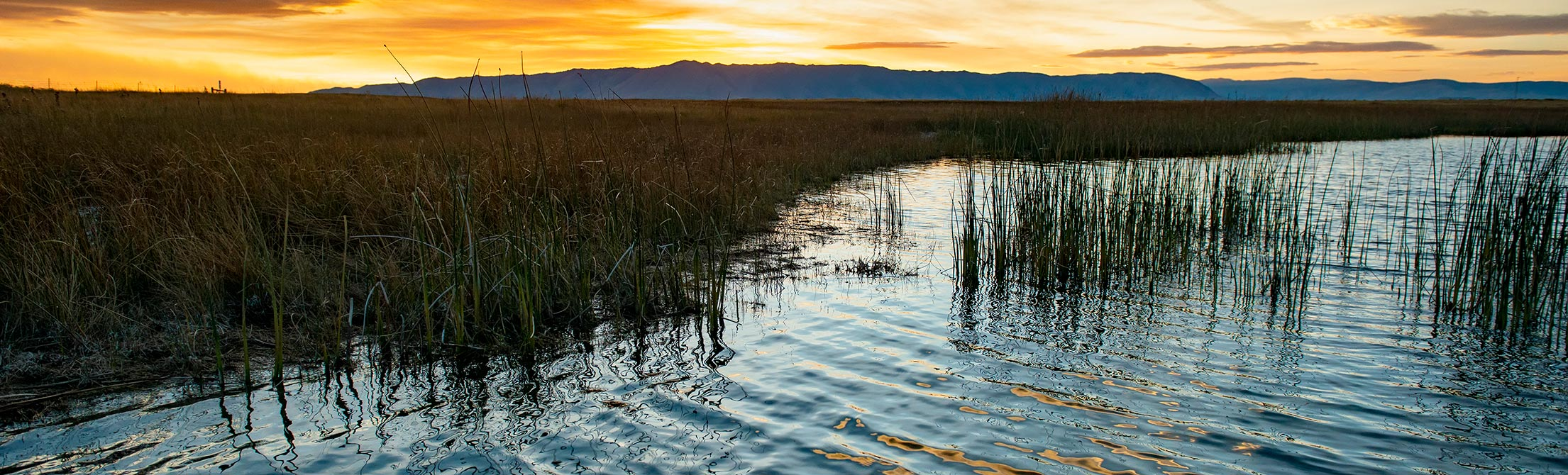 a photo of the Laramie Plains Lakes at sunset