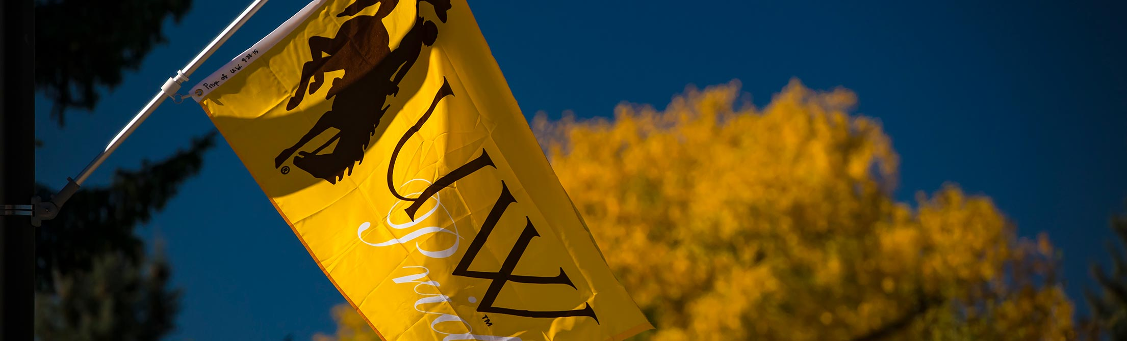 "gold flag against a blue sky. The flag reads ""UW Pride"""