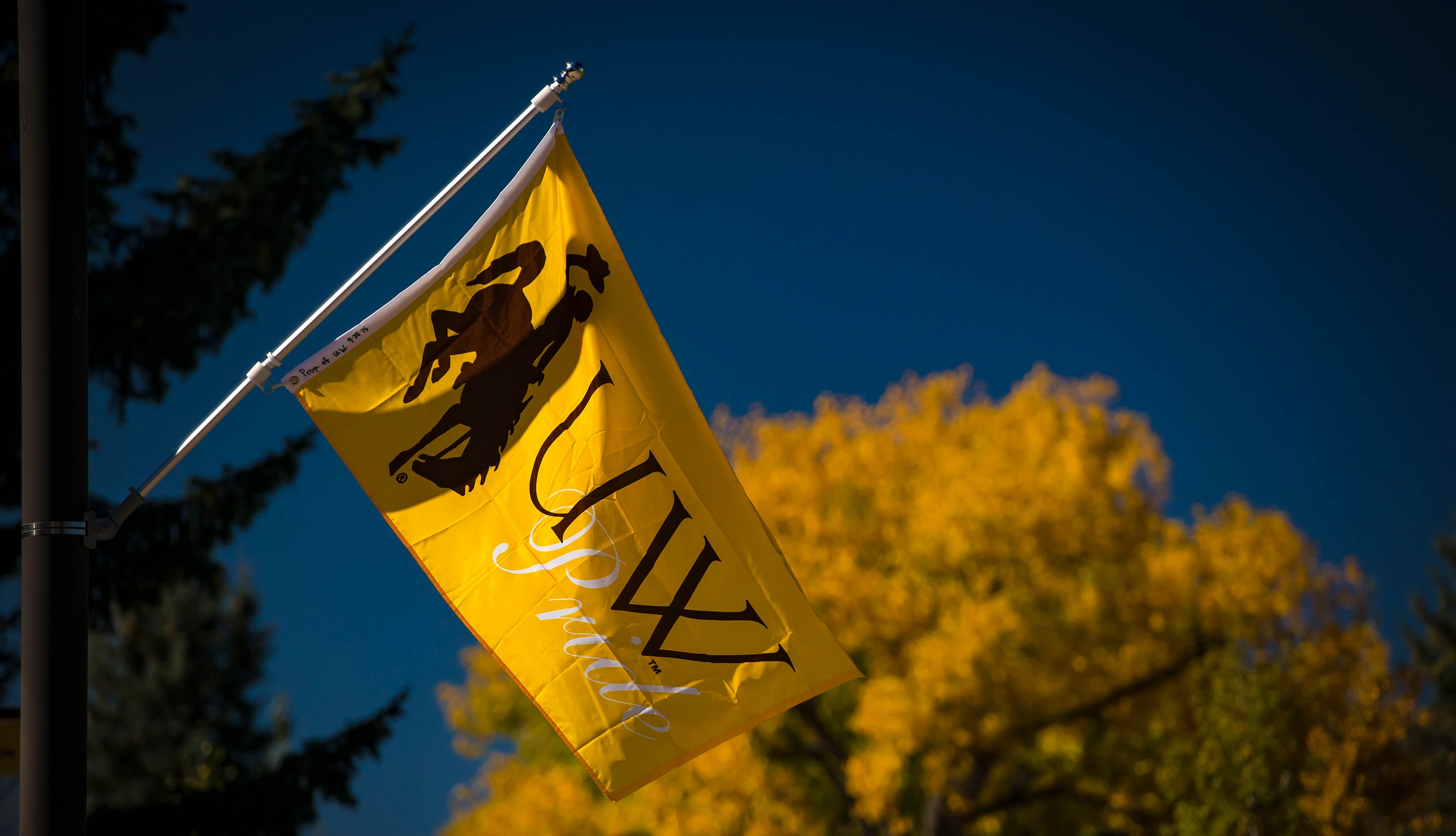 UW flag flying