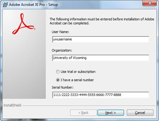 In the Setup Type window, click the type of install you wish to do and