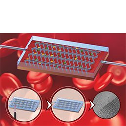 Graphic of microfluidic device