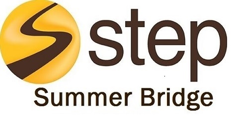 Summer Bridge Logo