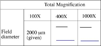 resolving power and magnification relationship