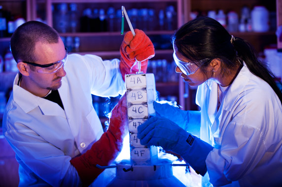 Molecular Biology different majors for college