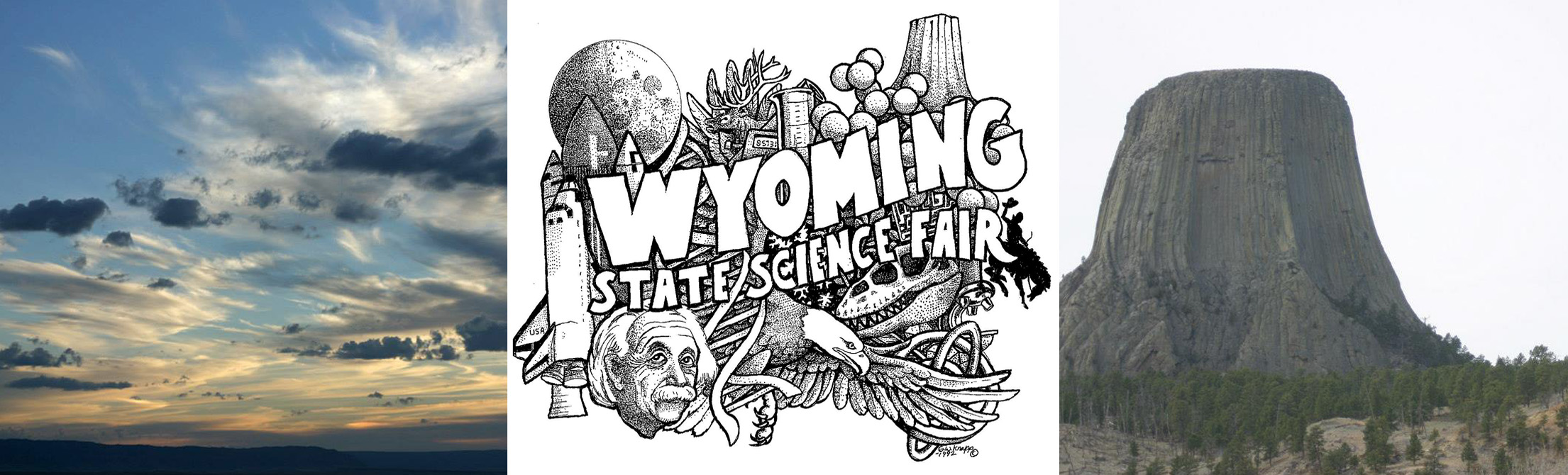 2020 Wyoming State Science Fair Logo Contest.Wssf Home University Of Wyoming