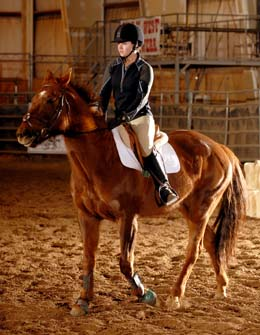 Uw S Downey Qualifies For Equestrian National Championship