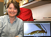 Entomology Doctoral Student Earns UWs Graduate Student Internationalization Honor