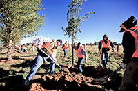 UW Again Joins as Sponsor for Community Service Day
