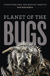 cover of bug book with a close up of a bug's head