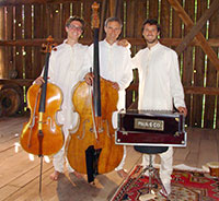 Three men with musical instruments standing in a barn