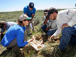 group of people crouched on ground around soil sample