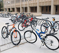 bicycles in racks