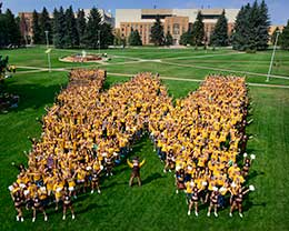UW freshmen in gold shirts grouped in a W formation, seen from above