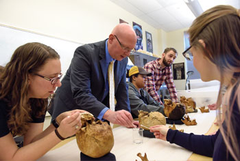 Associate Vice Provost for Graduate Education James Ahern works with anthropology graduate students Kristen Broehl, Ebony Creswell, Alexander Garcia-Putnam and Ryann Seifers moulding archeological teeth in order to study past diet.