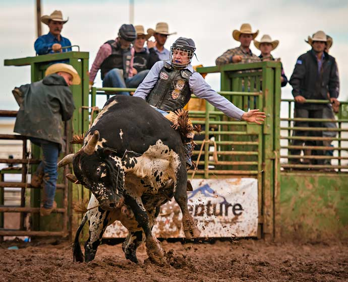 Picture of a bull rider riding a bull at a rodeo