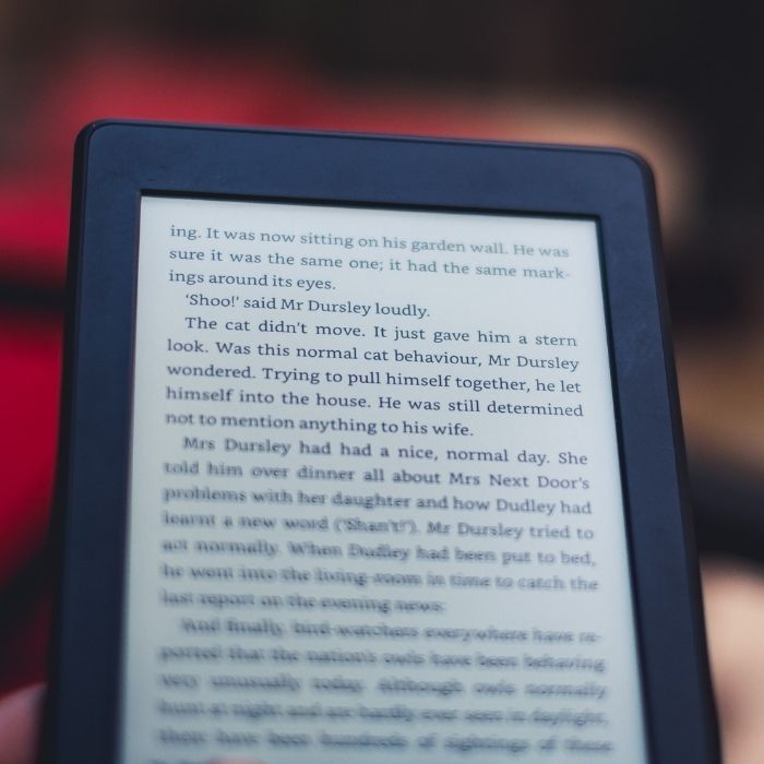 Kindle reader with book text